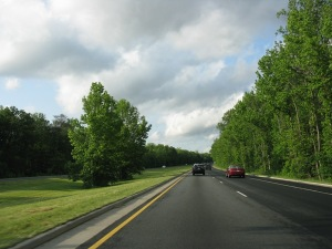 Beautiful trees...and asphalt...on 295. From Wikipedia.