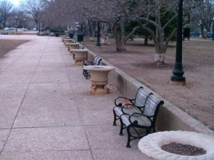 Benches in Lincoln Park. The same variety was recently installed in Marion Park.